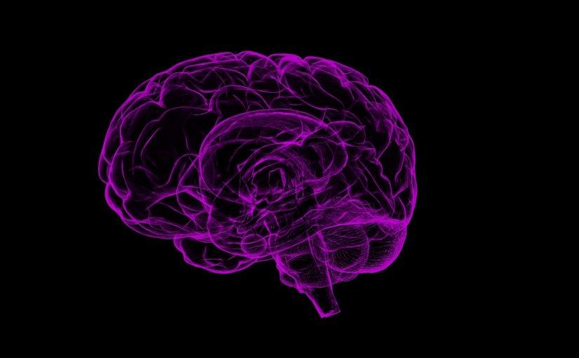 Neuroscience of Learning/Second Language Acquisition – Part 2 – Neurociência da Aprendizagem/Aquisição de Segunda Língua – Parte2