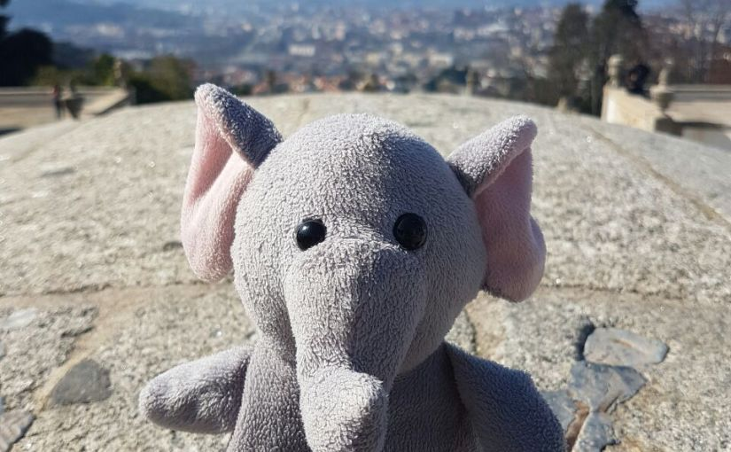 The Origin of Mr. Trunk, my travel buddy – and a stuffedelephant
